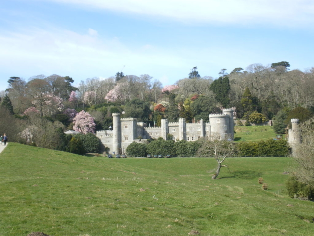 Castle in the woods