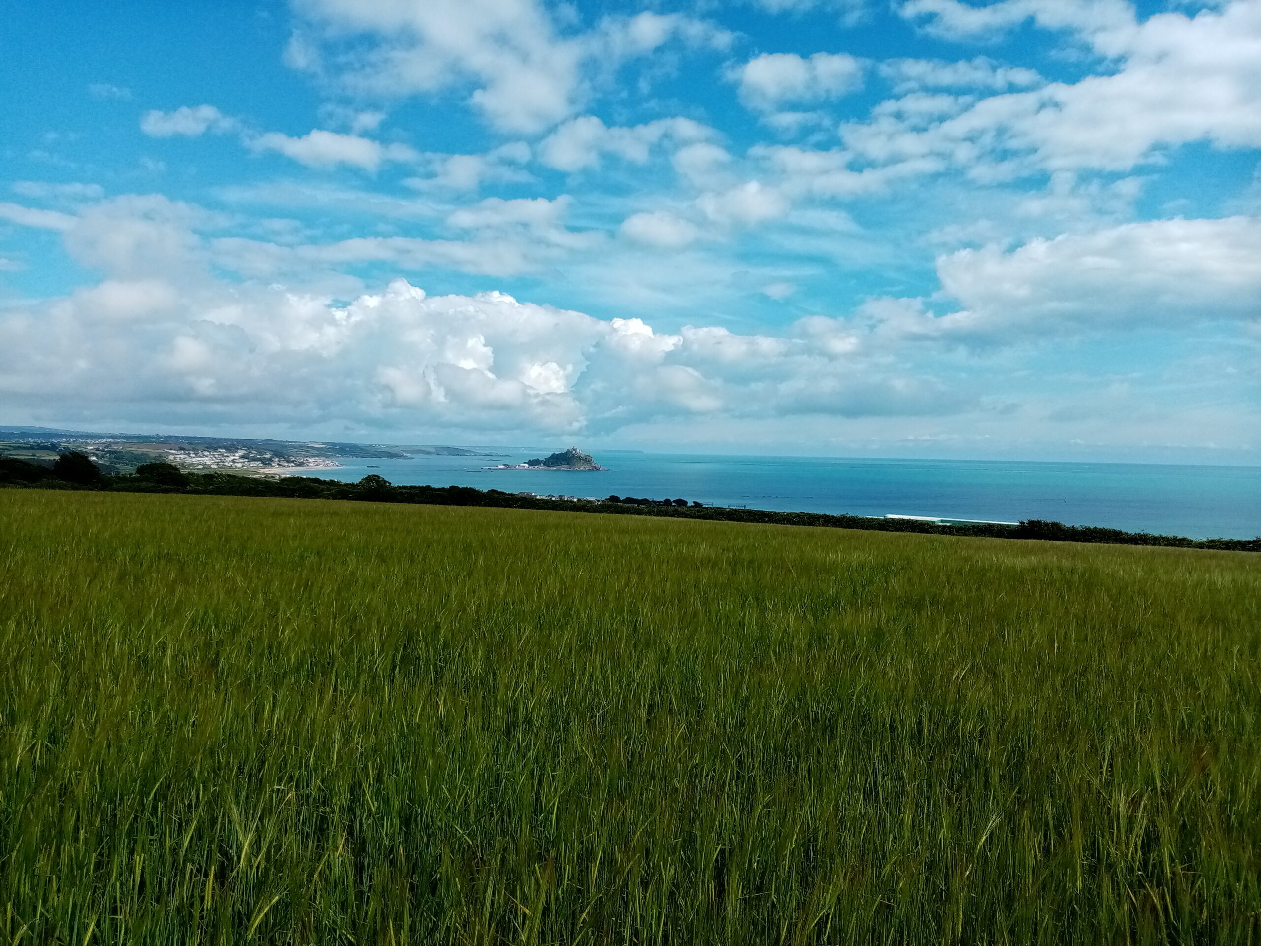 view of St Michaels Mount across a field